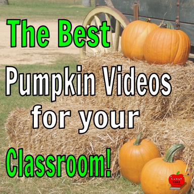 pumpkin videos